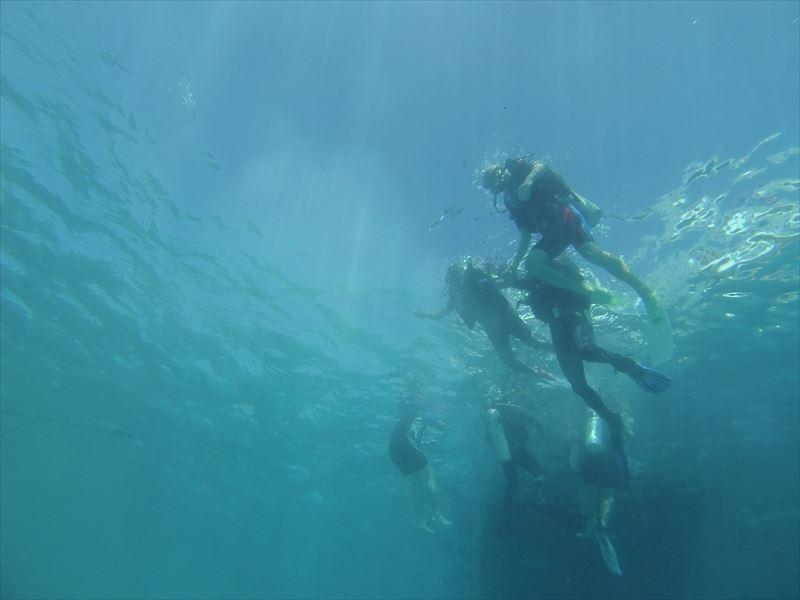 【ハルガダ】ダイビング
