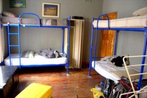 【ケープタウン】CAT & MOOSE BACKPACKERS