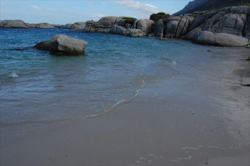 【ケープ半島】ボルダーズビーチ