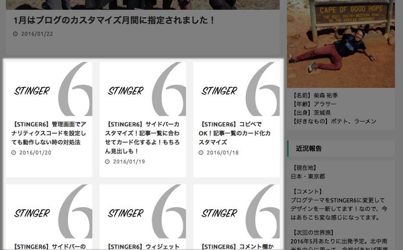 「STINGER6」カスタマイズまとめ