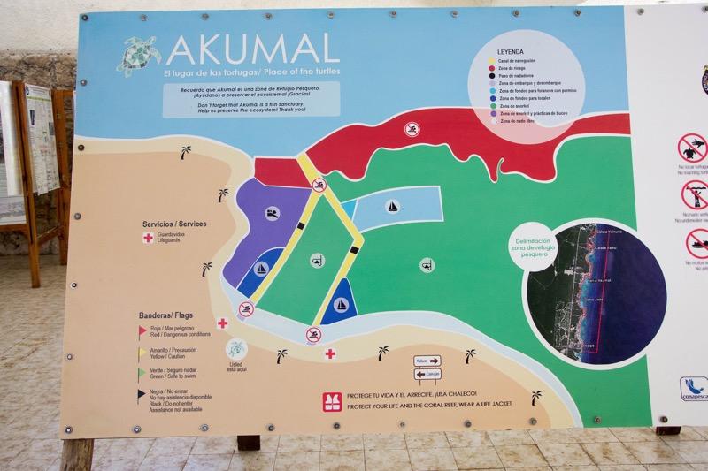 ウミガメと泳げるビーチ「アクマル」