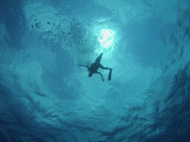 コスメル島のダイビング