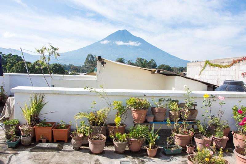 アンティグアの日本人宿|ペンション田代