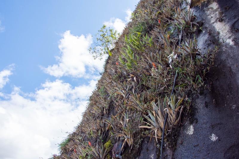 グアタペ|悪魔の岩ピエドラ・デル・ペニョール