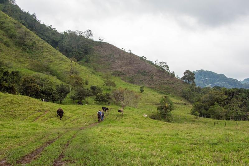 サレント Cascada Santa Rita