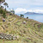 1泊2日チチカカ湖ツアー|タキーレ島へ。インカの段々畑が美しい!【2日目】