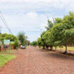 イグアス居住区でパラグアイ移民の歴史を学ぶ。