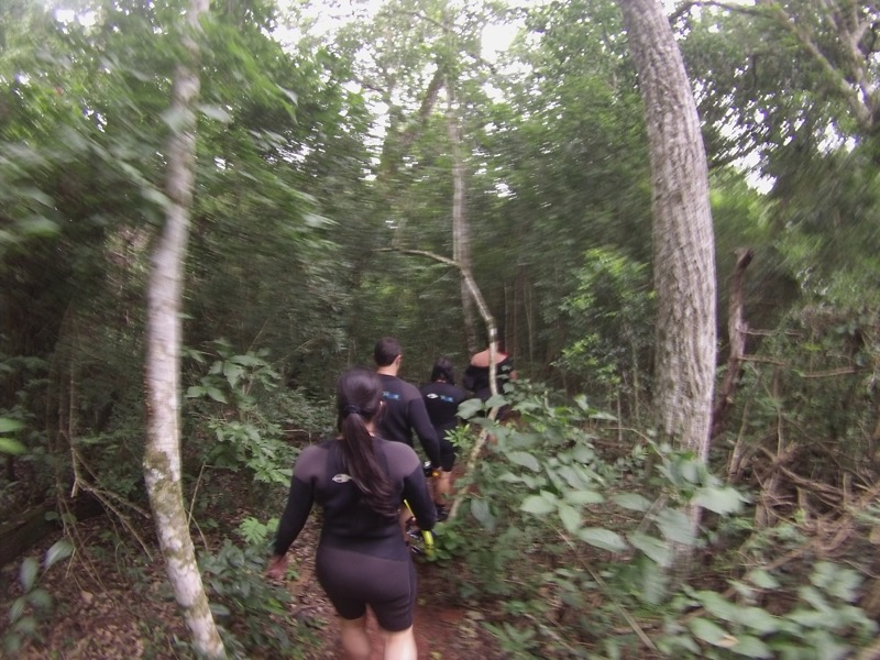 ボニート|プラタ川のシュノーケルツアー